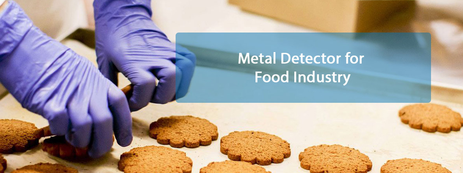 Metal Detector for Food Manufacturers in GOA